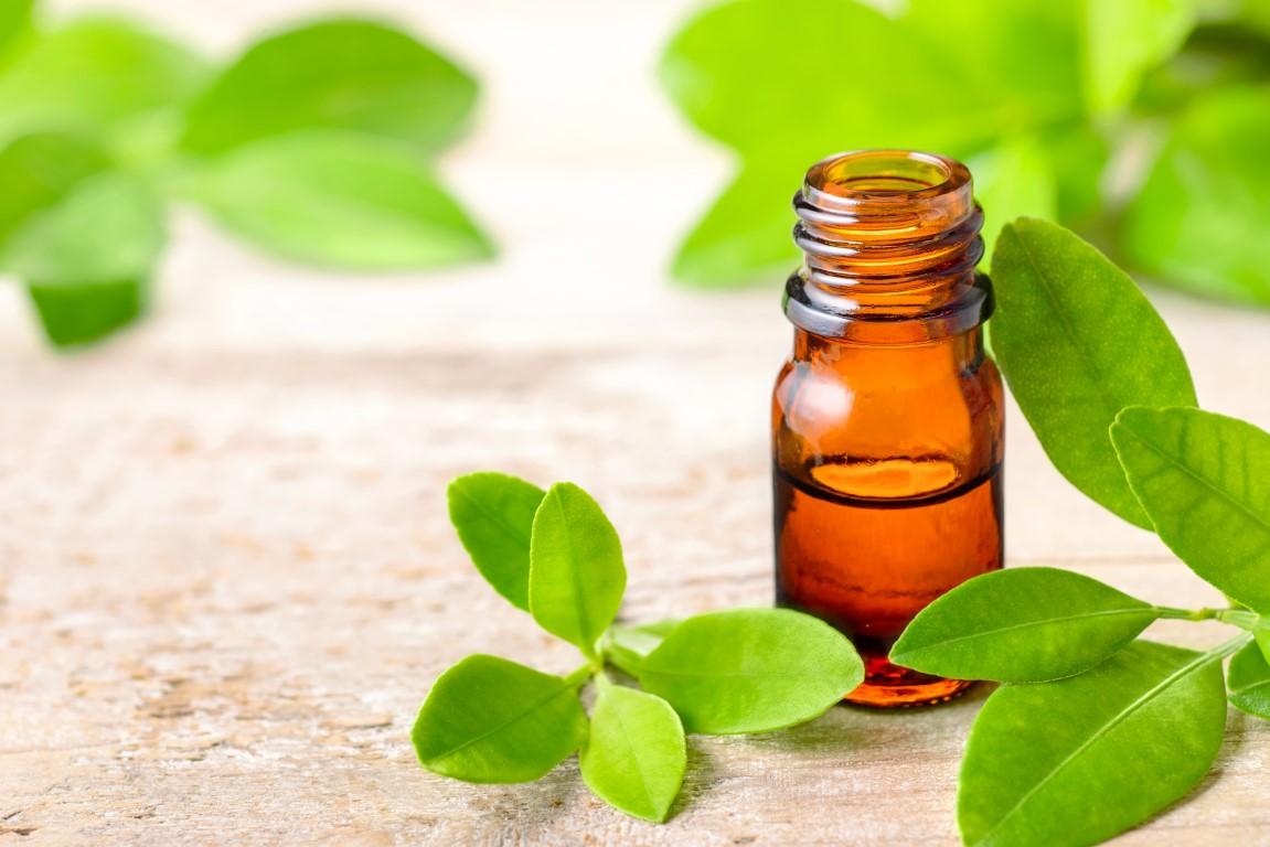 huile essentielle de petit grain bigarade pour infection uriniare