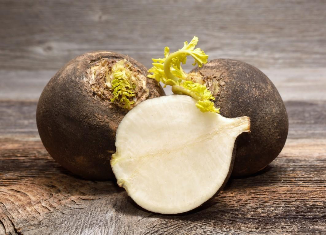 radis noir comme remede de grand mere pour baisse le taux de gamma gt