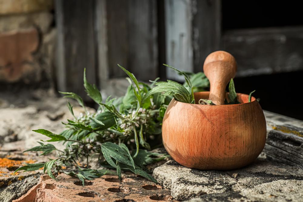 remèdes naturels gastro-entérite
